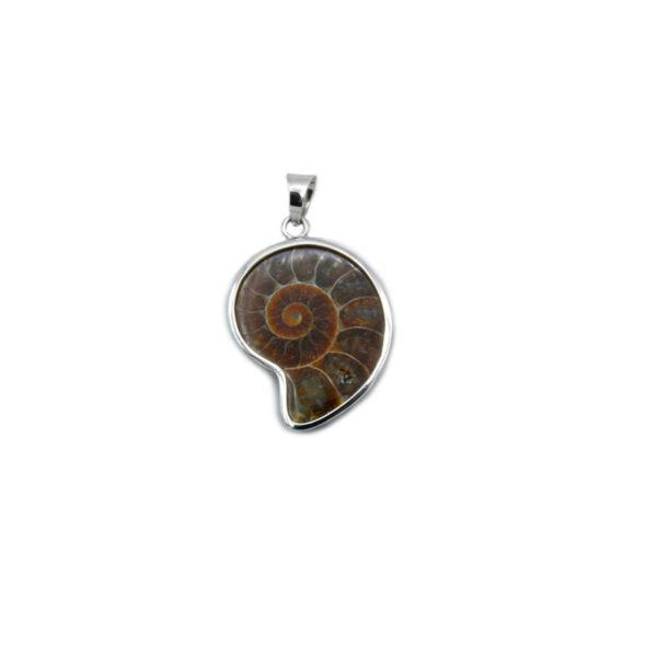 colgante ammonite pequeño en plata de ley 925