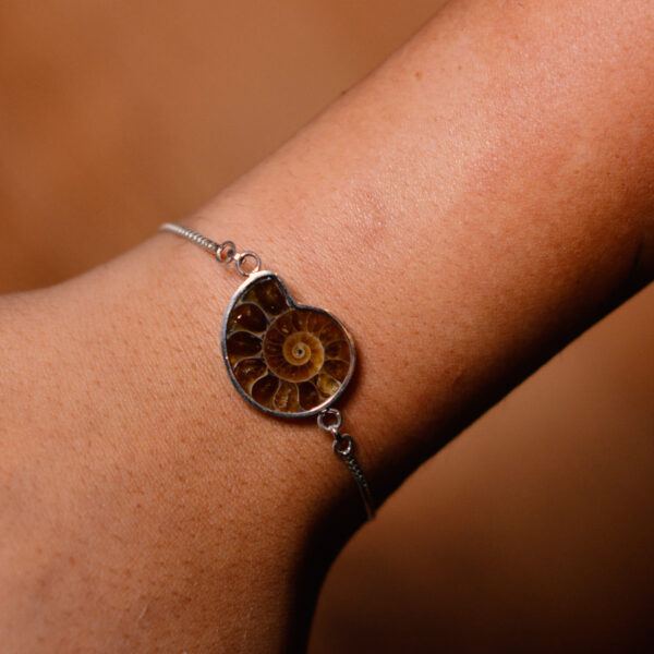 pulsera ammonite
