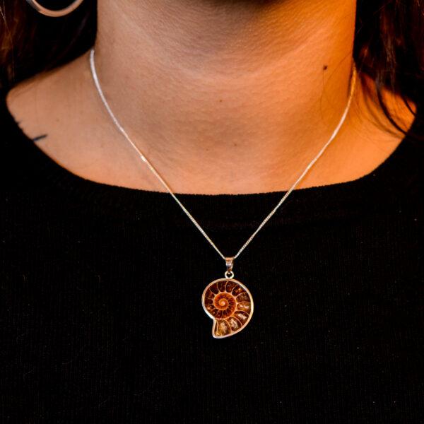 Colgante ammonite pequeño